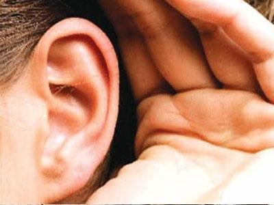 耳朵和长寿的关系