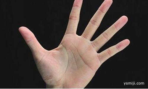 从手掌这里看血脂高的症状