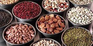 这些食物蕴含的营养有利于头发变黑
